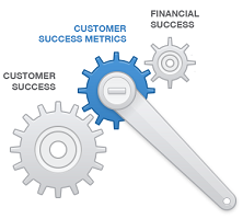 bluenose customer success metrics